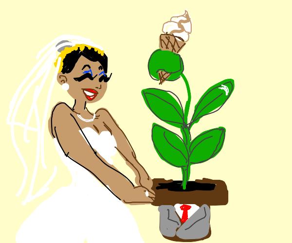 Bride marries dark plant with icecream.