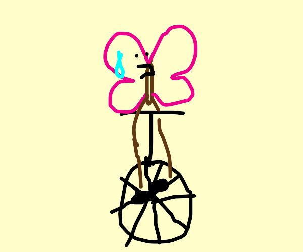 butterfly on a unicycle