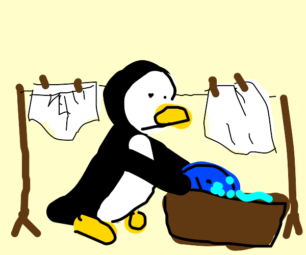 penguin washing their clothes