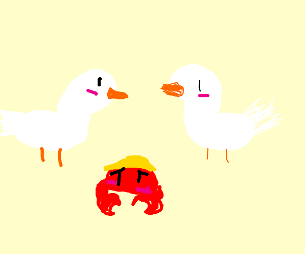 Crab feels he doesn't fit in with seagulls