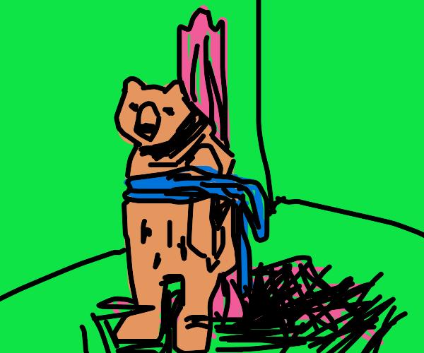 bear tied to a pole