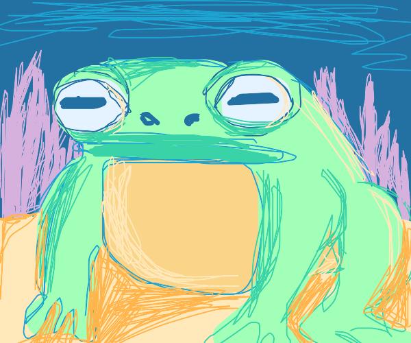 Mystical Toad