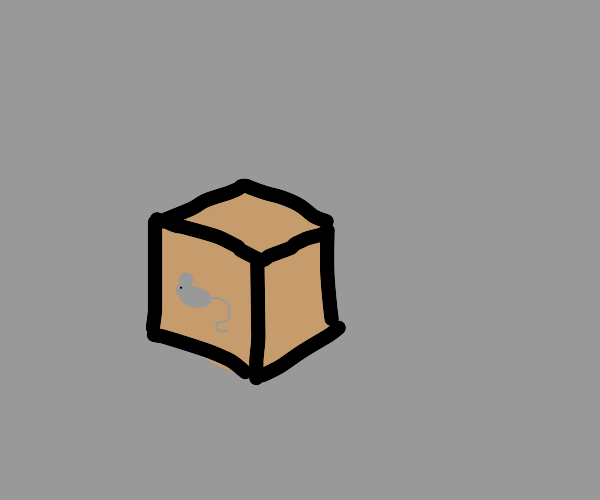 Box with mouse logo