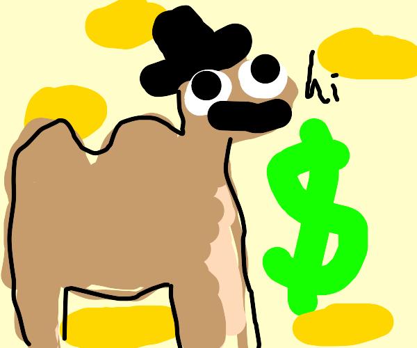 Wealthy Camel