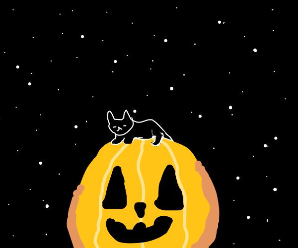 Black cat naps atop a jack o' lantern.