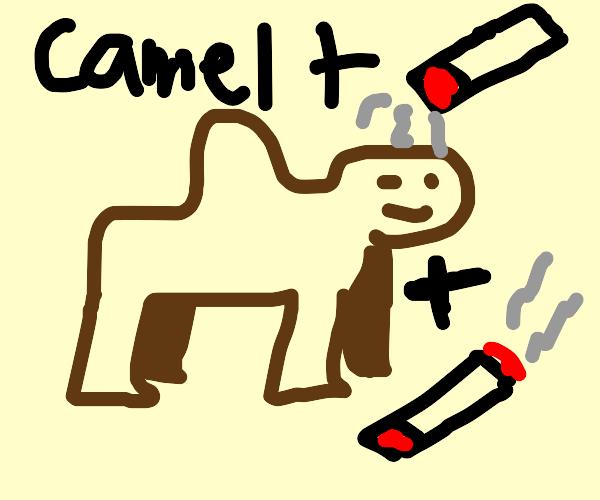 camel cigarettes (not sponsored)