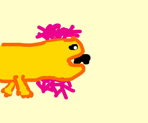 enlarged orange axolotl eating a car