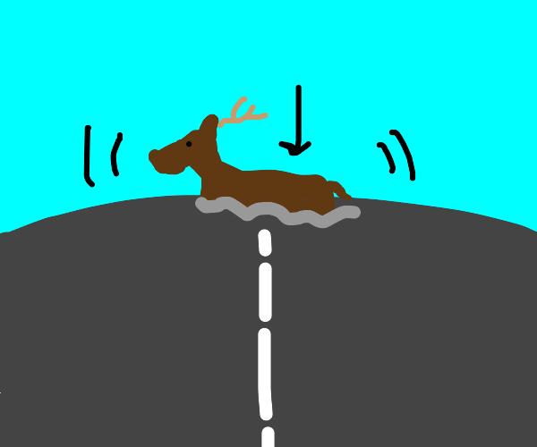 Deer sinking into the Highway