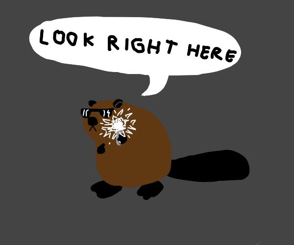 M.I.B Beavers