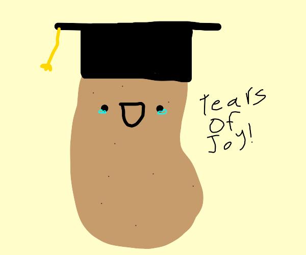 Potato graduation