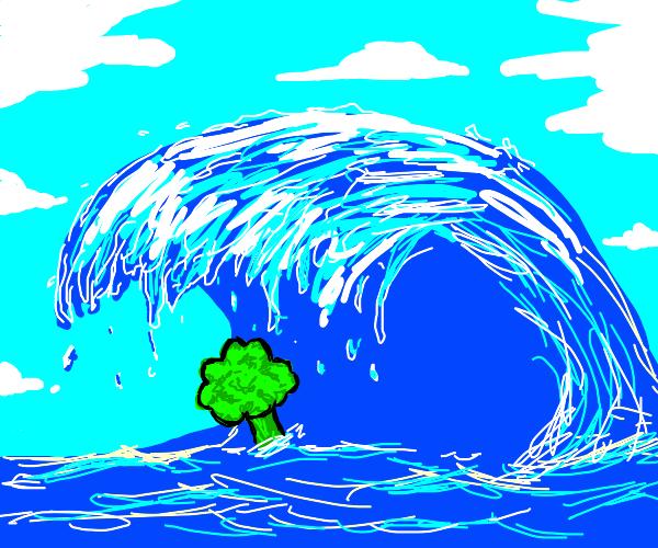 Vegetable in a Tsunami