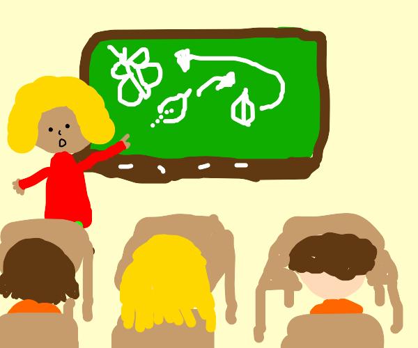 Teacher teaching about butterflies