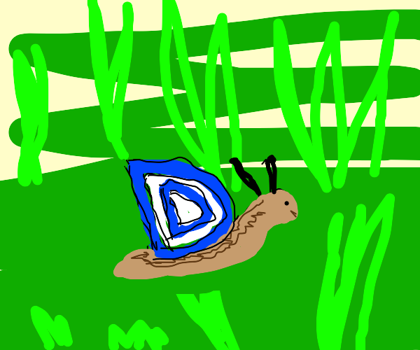 D Snail