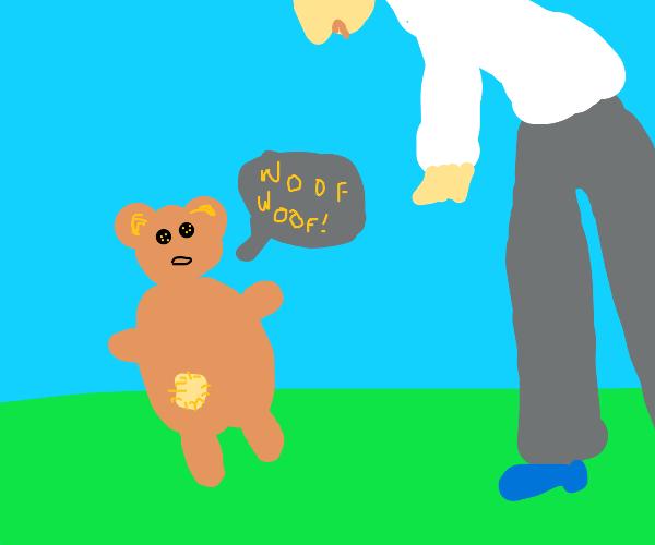 Teddy Bear barks at human