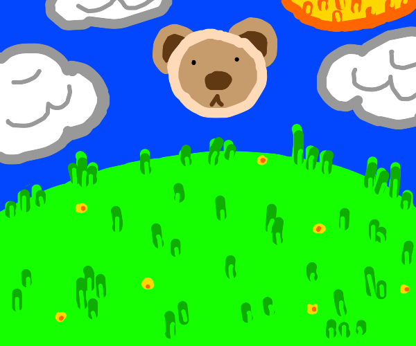floating bear head in sky over field