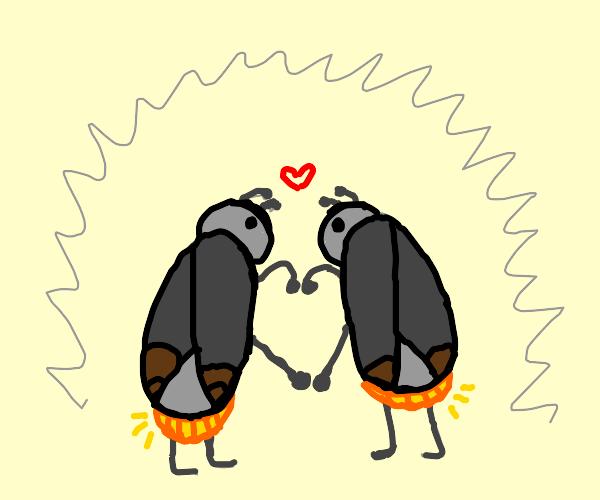 Lightning bugs do a love dance.