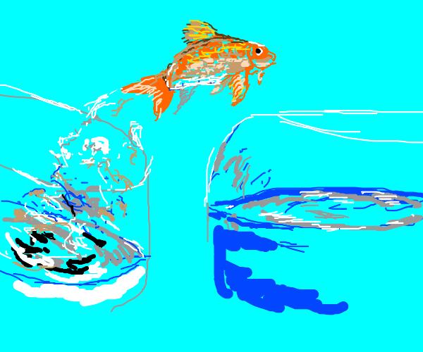 goldfish rebellion with a gun