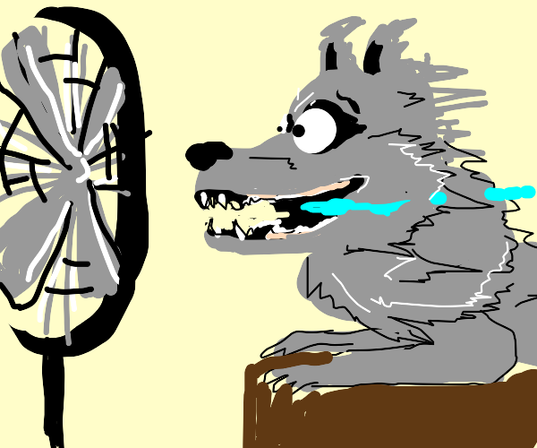 wolf in front of the fan