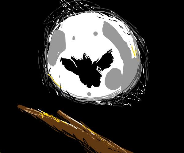 Owl under the moonlight