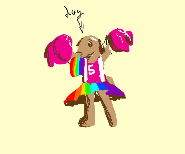 gay cheerleader dog