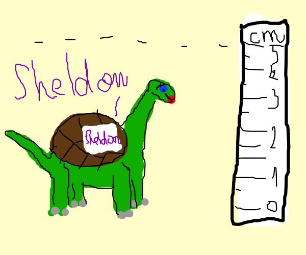 Sheldon, the tiny dinosaur turtle