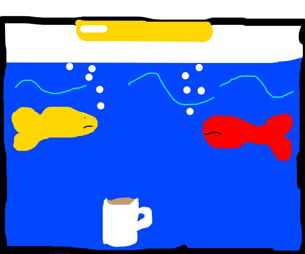 Coffee in an Aquarium