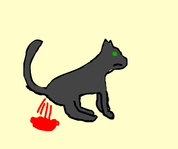 cat pees blood