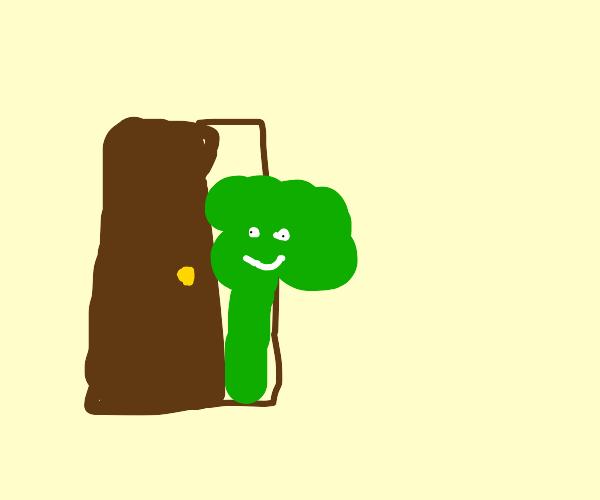 Enter: Living Broccoli