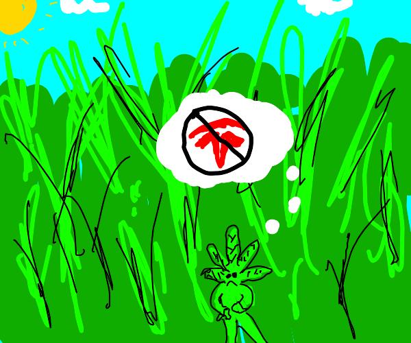Grassman hates anti not green energy!
