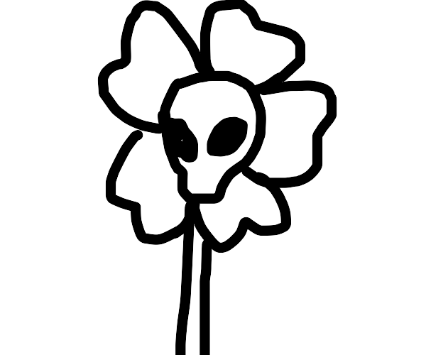A flower with a skull at it's center
