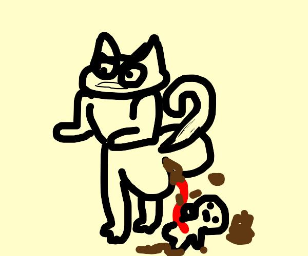 Cat poops Fetus