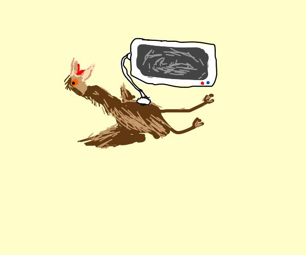 Spastic emu ultrasound