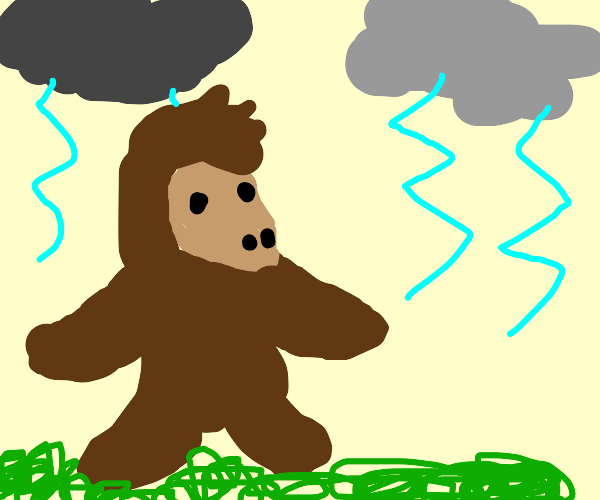 Ape in a Storm