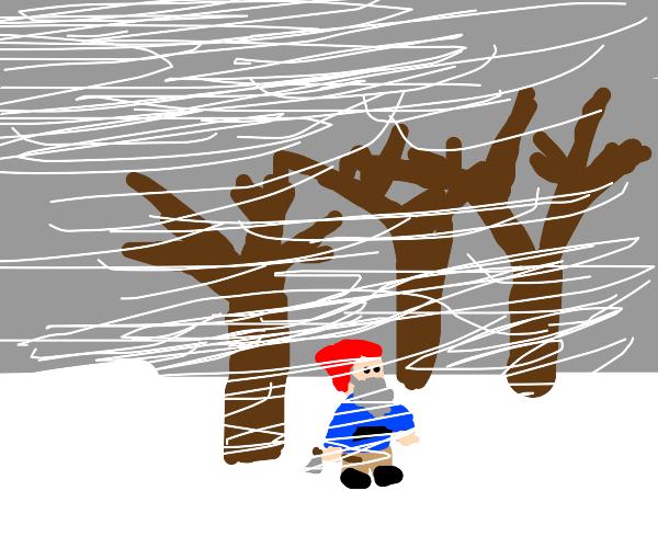 Gnome in a Blizzard