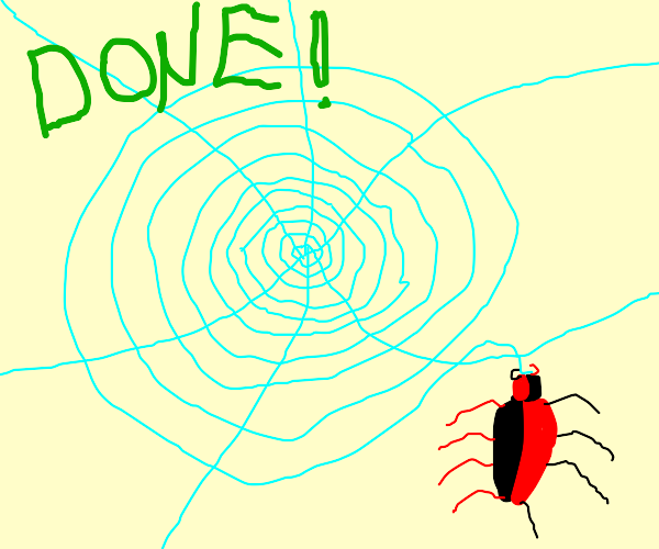 A black and red spider finishes their web