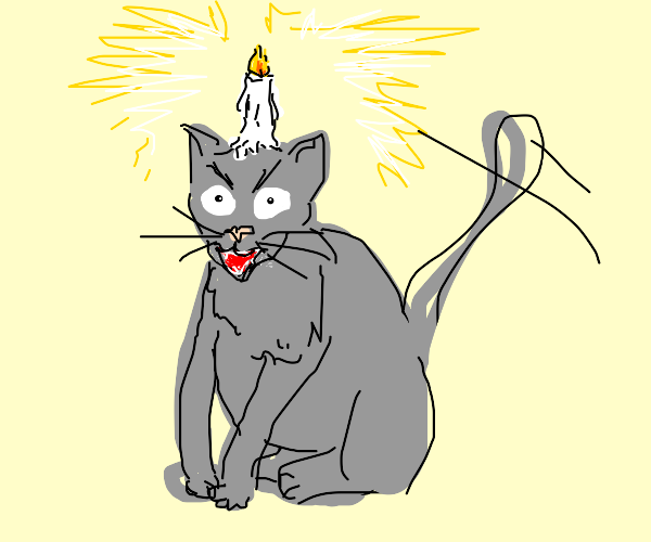 Rabid cat with a candle on the head