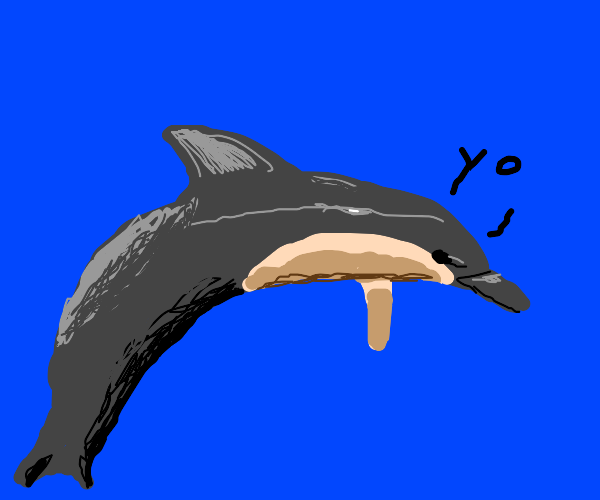 The coolest dolphin