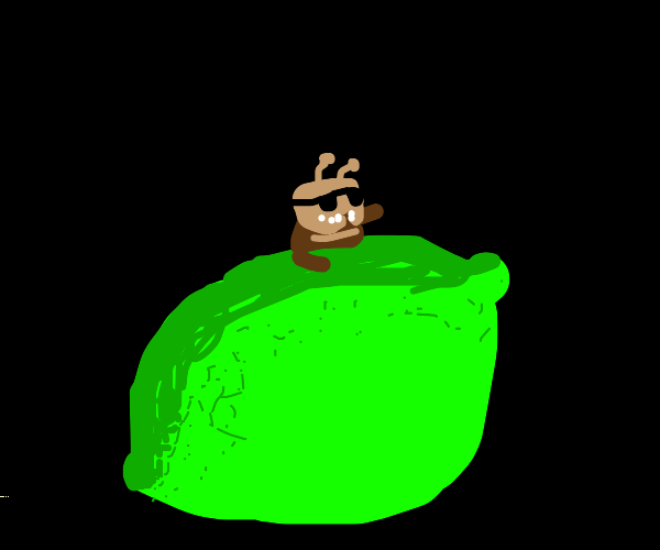 Bug inside of a lime