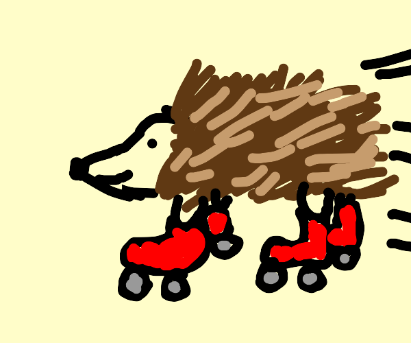 Silly Hedgehog