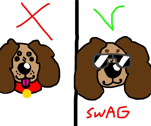 Real dog? No, swag dog