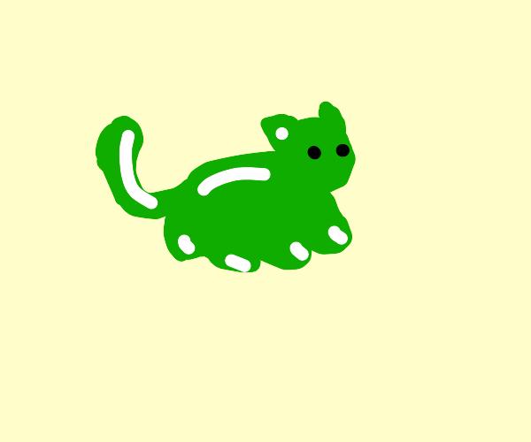 GUMMY CAT