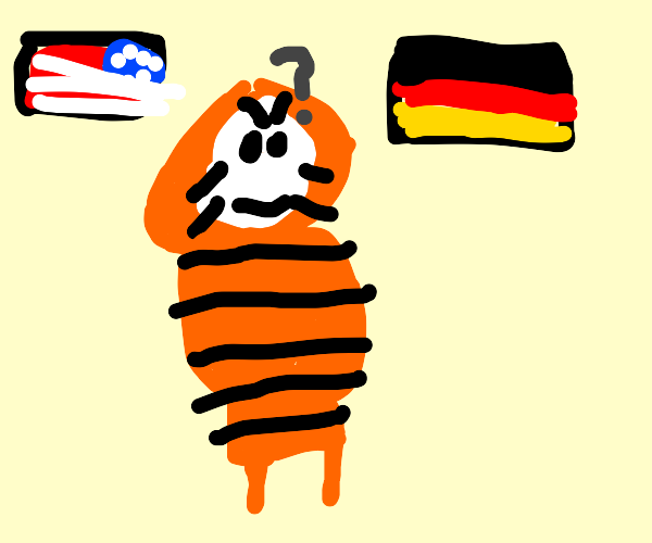 Tiger thinks about america and germany