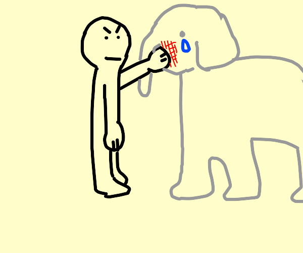 hitting an elephant in the face