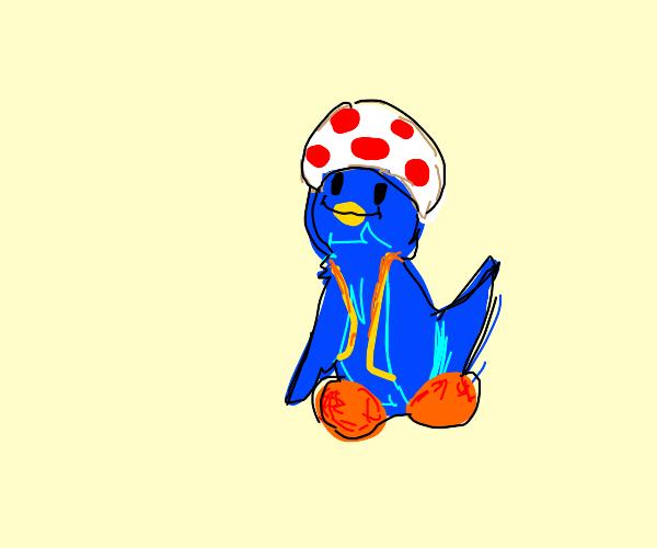 Bird Toad