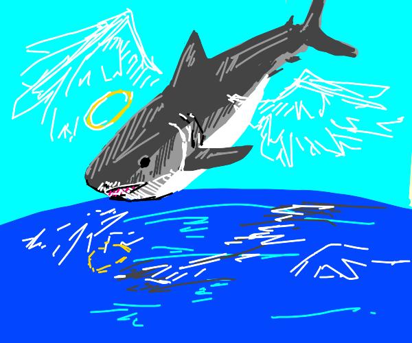 Angel shark flying above the ocean