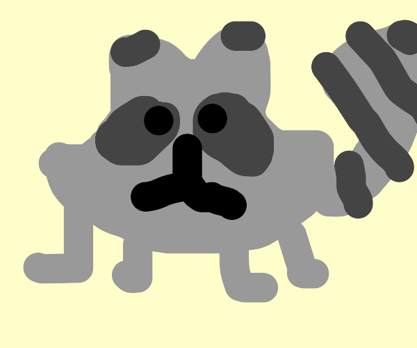 Racoon (Draw with the thickest brush only)