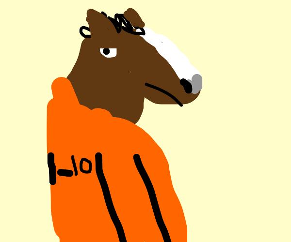 horse in prison