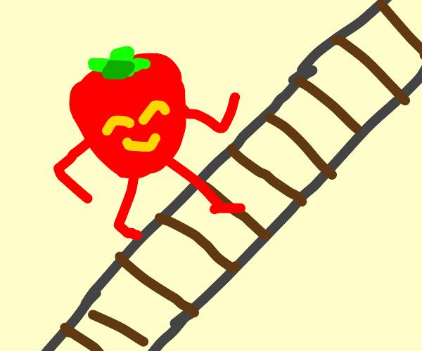 Fruit crossing the Tracks