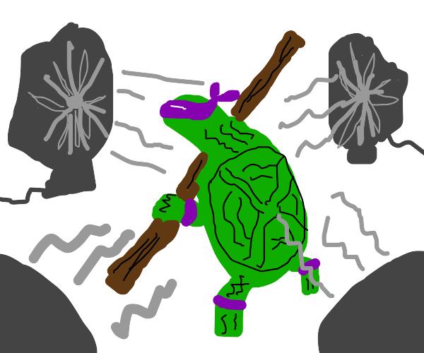 Ninja turtle has fans