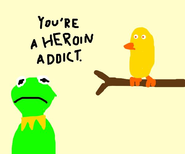 Kermit accuses a bird of drug use